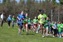 Running is Elementary 2018
